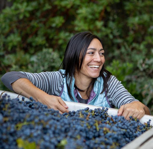 Clif Family Winemaker Laura Barrett